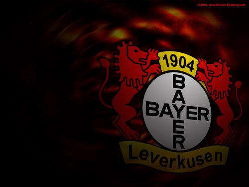 bayer04leverkusen139036.jpg