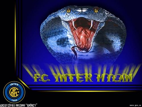 inter4.jpg